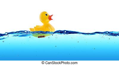 caucho, agua, flotador, pato