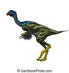 Caudipteryx Side Profile