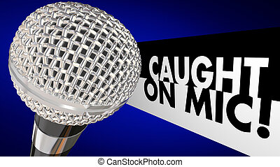 Caught on Microphone Interview Talk Words 3d Illustration
