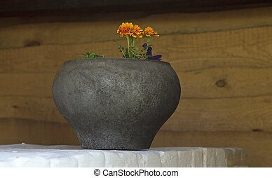 cauldron with a flower