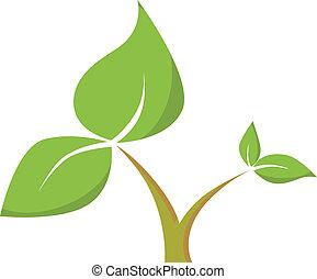 caule, com, folhas