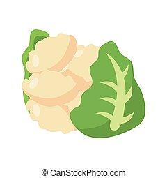 cauliflower icon, flat detail style