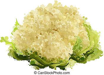 cauliflower of blots vector illustration