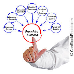 Causes of Franchise Success