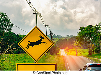 Caution ! wildlife crossing sign beside asphalt road near small hill and green grass field. Car of the tourist driving with caution during travel