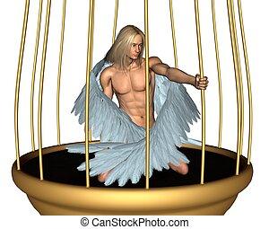 cautivo, macho, jaula, oro, ángel