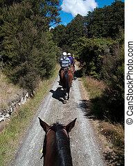 cavalcade, campagne, cheval
