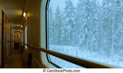 cavalcade, train, par, hiver, forêt