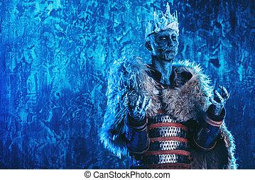 cavaleiro, coberto, com, neve