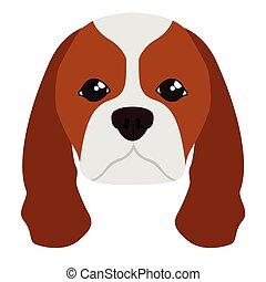 Cavalier king charles spaniel avatar