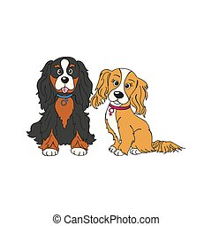 cavalier king charles spaniel dog breed vintage