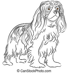 Cavalier King Charles Spaniel Drawing - An image of a...