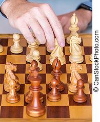 cavaliere, spostare, -, mano, mezzo, asse gioco, marche, scacchi