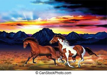 cavalli selvaggi, corsa, illustrazione