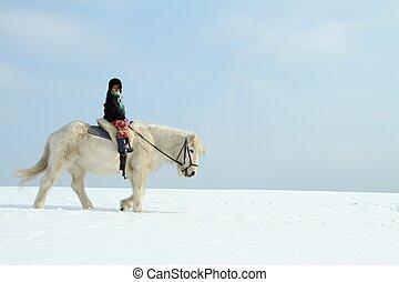 cavalli, sentiero per cavalcate