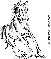 cavallo, illustrazione