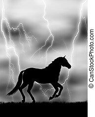 cavallo, lampo