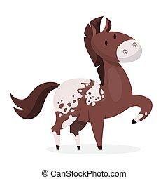 cavallo marrone, domestico, mammifero, selvatico, animal., o