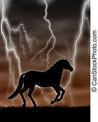 cavallo, tempesta