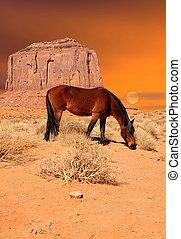 cavallo, valle, monumento