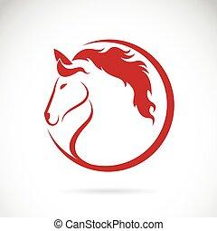 cavallo, vettore, disegno, fondo, immagini, bianco