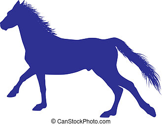 cavallo, vettore