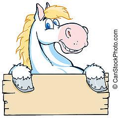 cavalo branco, olhar, um, em branco