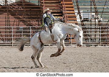 cavalo, bucking