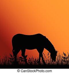 cavalo, comer, ilustração, natureza