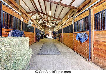cavalo, estável, interior, com, ei, e, madeira, doors.