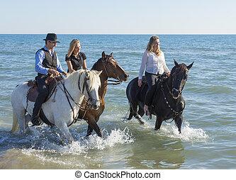 cavalo, grupo, cavaleiros