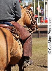 cavalo, homem