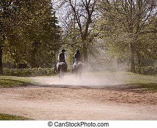 cavalo, parque, cavaleiros