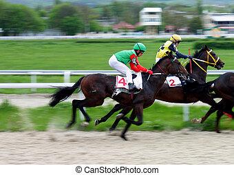 cavalo, racing.