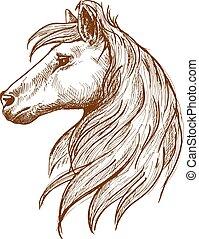 cavalo selvagem, cabeça, com, fluir, mane, vindima, esboço