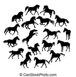 cavalo, silhuetas, cobrança