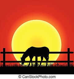 cavalo, silueta, ilustração, natureza