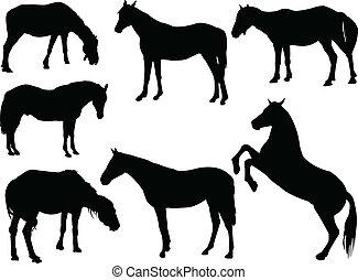 cavalo, vetorial, -