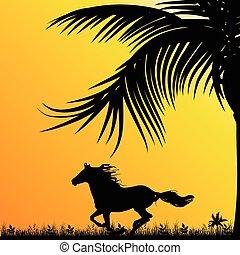 cavalo, vetorial, coloridos, natureza