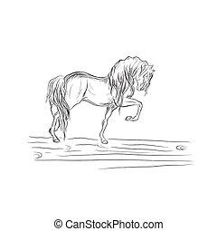 cavalo, vetorial, esboço, estilo