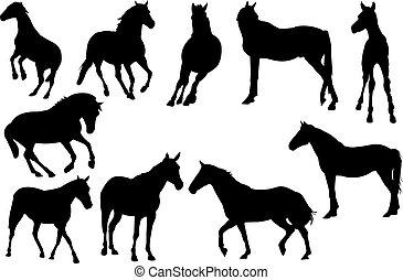 cavalo, vetorial, silueta, ilustração