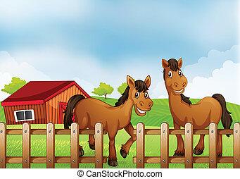 cavalos, dentro, a, cerca madeira, com, um, celeiro