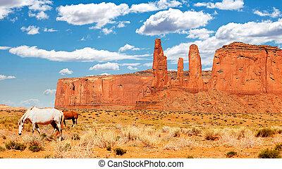cavalos selvagens, vale, monumento