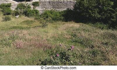 Cave city Eski-Kermen medieval fortress town in peninsula of Crimea.