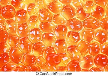 caviar - Caviar grainy closeup on a white background in ...
