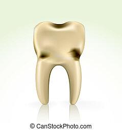 cavité, malsain, jaune, dent