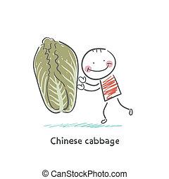 cavolo, cinese, uomo