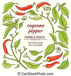 cayenne pepper elements set on white background