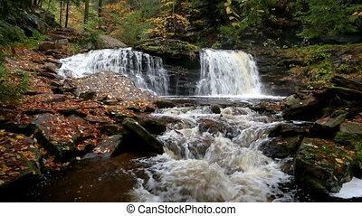 Cayuga Falls in Ganoga Glen Loop - Cayuga Falls is a...