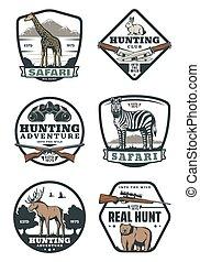caza, deporte, retro, insignias, safari, y, cazador, club